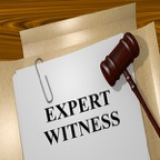 Expert-Witness-Reports